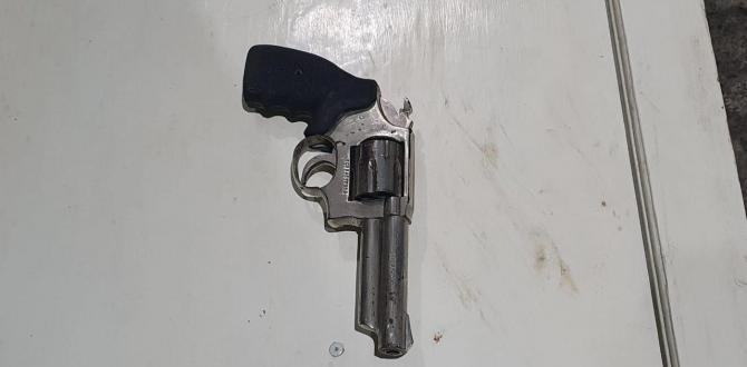 Arma de fuego incautada