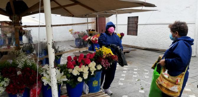 thumbnail_CUENCA ANITA PINTADO ATIENDE A UNA DE SUS CLIENTES EN LA VENTA DE FLORES 8
