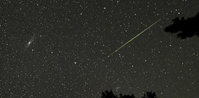 Cualquier cielo oscuro podrás ser testigo de la lluvia de meteoros.
