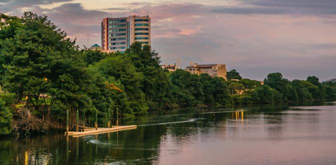 Guayaquil Estero