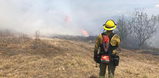 Los bomberos intentan controlar el incendio.