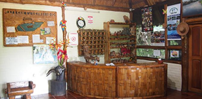 Instalaciones de la hostería Los Helechos, en Tena.