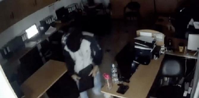 Según los videos, dos fueron los pillos que ingresaron.