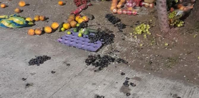 También se retiró a vendedores de frutas y verduras.