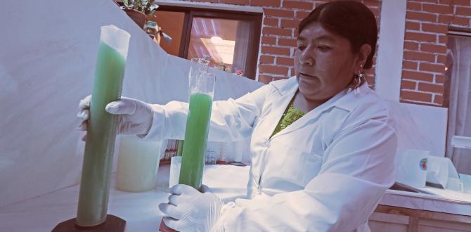 """Cutipa llegó luego a trabajar en la Alcaldía de El Alto donde """"hacía un control de calidad de estos aceites de fritura"""""""