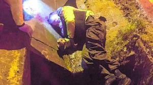 Imagen Imagen Imagen ACCIDENTE POLICIA3 DIF (30173869)