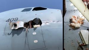 avion-choque-pajaro-fotos-dano