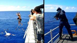 tiburon-disparos-video-fotos