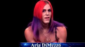 aria-dimezzo-new-hampshire-nh