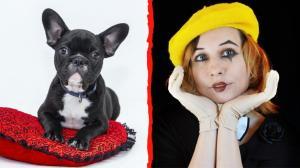 reto-viral-payaso-perro-redes-sociales-internet