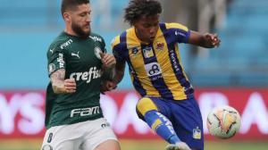 Delfín cayó ante Palmeiras 1-3.