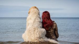 perro y dueño