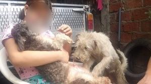 Camila refugia sus aflicciones compartiendo y mimando a las mascotas de su padre.