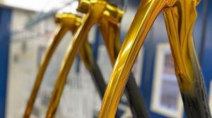 Carapaz bici dorada