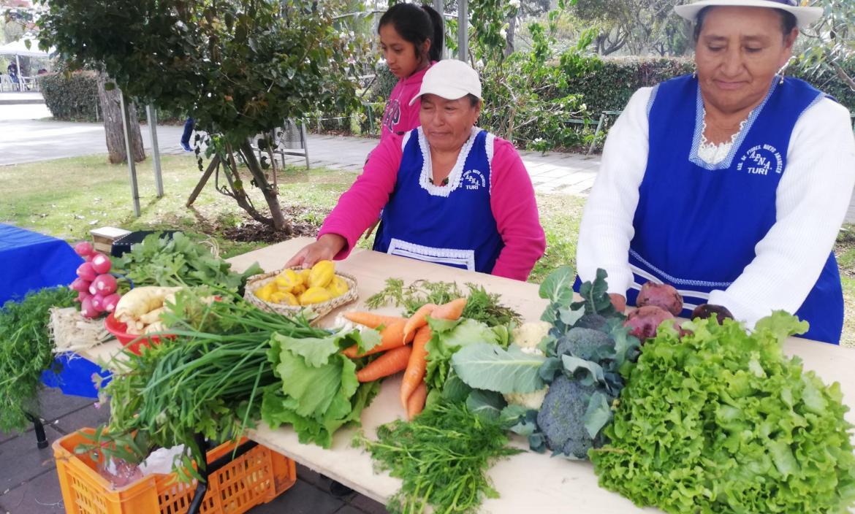 Imagen hortalizas (1)