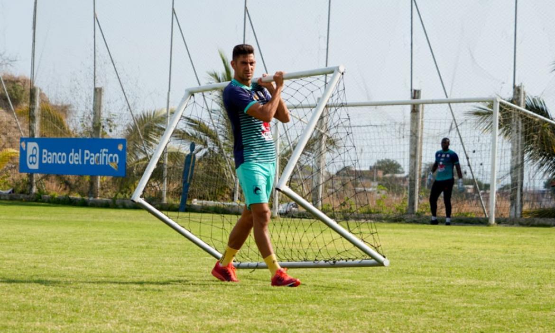 Imagen Bruno Piñatares - Delfín