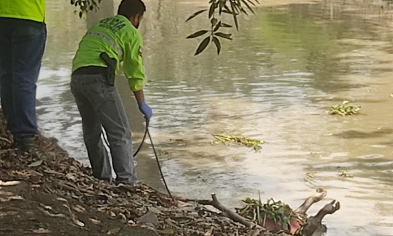 Para ser retirado del canal de  agua, el cuerpo fue arrastrado hasta la orilla. Luego fue llevado al Laboratorio de Criminalística.