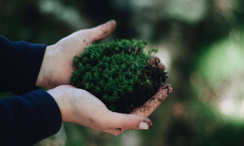 La ONU advierte que se vienen años vitales para salvar el planeta.
