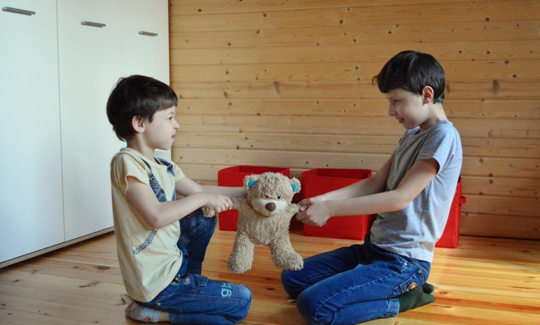 Padres y cosas externas pueden causar rivalidad entre hermanos.