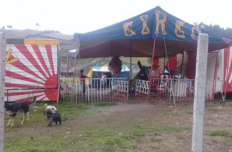 Circo de Quito