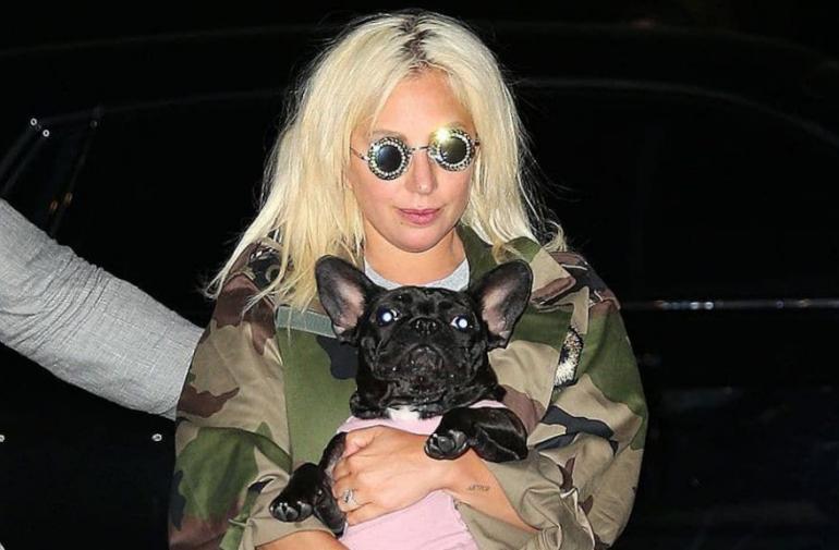 El miércoles mataron al cuidador de perros de Lady Gaga.